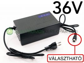 36V elektromos kerékpár akkumulátor töltő (CK600140) - 06705125161