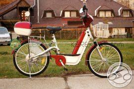 Arizóna TDH018 elektromos kerékpár alkatrészek készletről - 06705125161